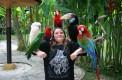 bali-bird-park-ubud -tour-03