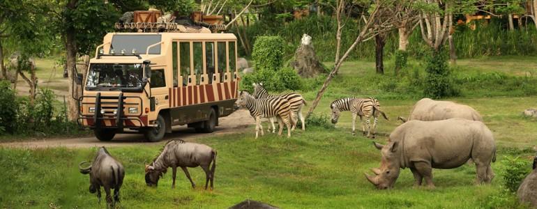 bali-safari-marine-park-05