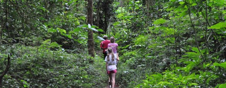 jungle-trekking-tour-02